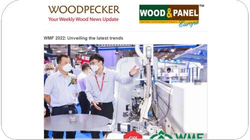 news wood panel