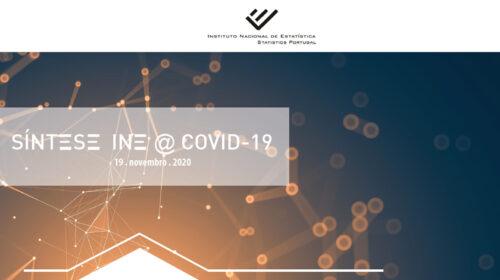 Síntese INE@COVID-19 (19 novembro 2020)